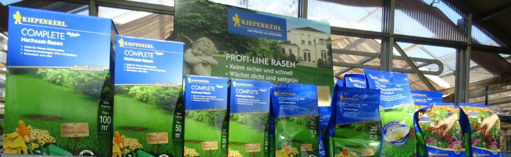 balkonpflanzen online kaufen berlin